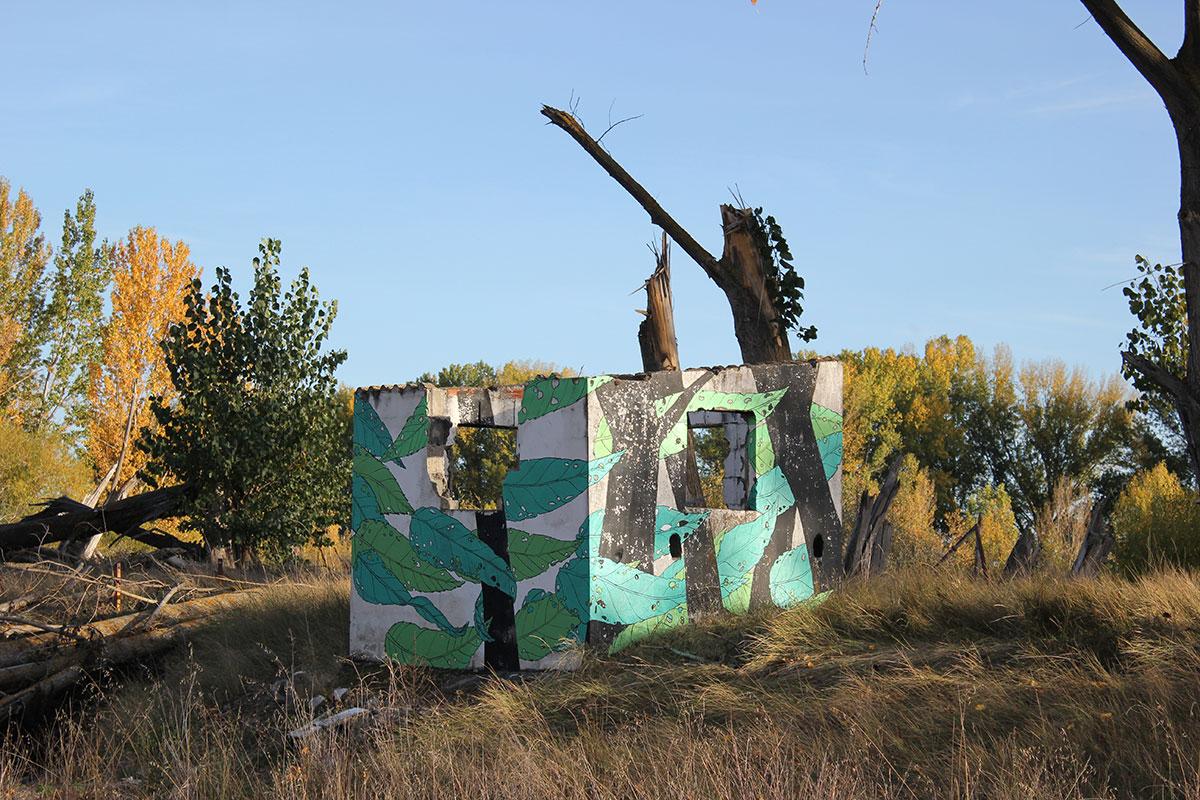 20-reforestando-1