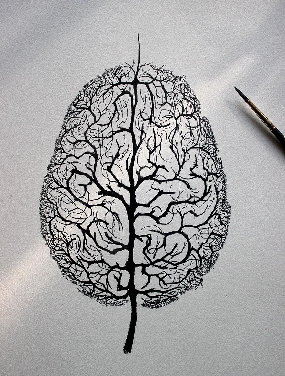 hemisferios-1